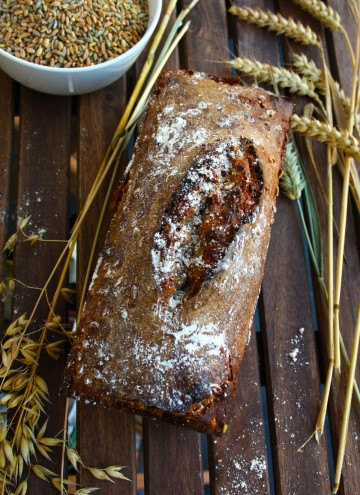 Whole Grain Spelt Bread - bake your own healthy organic whole grain spelt bread with minimum ingredients. A recipe from Germany, the land of bread! Really delicious!