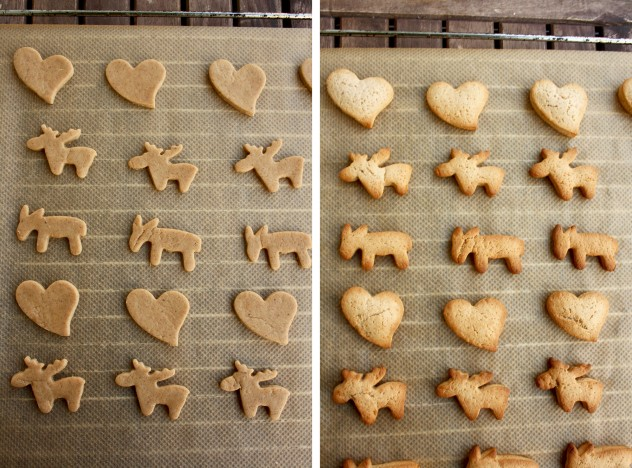 German Christmas Cookies - Lebkuchen - Shapes of Yummy Heats and Animals