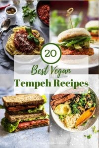20 Best Vegan Tempeh Recipes Roundup Collage